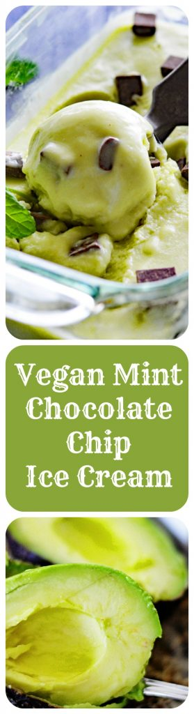 Vegan Mint Chocolate Chip Ice Cream