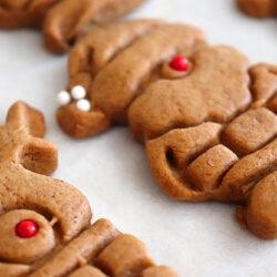 Vegan Gingerbread Cookies (That Won't Spread) Hero